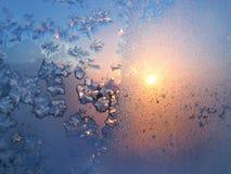 Ijspatroon en zonlicht op de winterglas Royalty-vrije Stock Afbeeldingen
