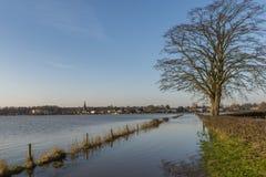 IJssel flodslättar på Dieren Arkivbilder