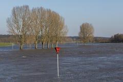 IJssel Flood Plains in Gelderland. Flood plains at the river IJssel near Dieren in Gelderland Royalty Free Stock Photography
