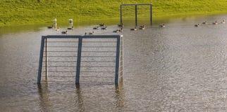 IJssel Flood Soccer Field in Gelderland. Soccer field during flood of the river IJssel near Rheden in Gelderland Stock Photo