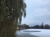 Ijsvijver in de winter stock afbeeldingen