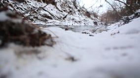 Ijswater dat in een snelle de lentestroom loopt Sneeuw die op steile kreekbanken smelt stock video