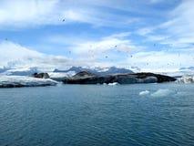 Ijswater in IJsland. Royalty-vrije Stock Fotografie