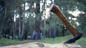 Ijzerbijl in een boomboomstam Sluit omhoog Scène voor verschrikkingsfilm Hakkend brandhout stock video