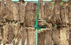 Ijzerdeur door oude dikke schors wordt behandeld die Royalty-vrije Stock Afbeelding