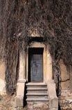 Ijzerdeur met trap van de oude bouw in de herfst Royalty-vrije Stock Afbeeldingen