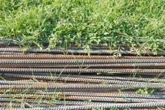 Ijzerstapel op het gras Stock Foto
