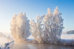 Ijzig aardlandschap bij zonnige de winterochtend De zon verlicht sneeuwbomen op rivierbank royalty-vrije stock afbeeldingen