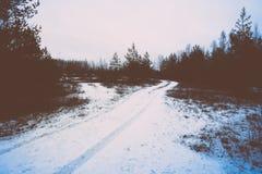 Ijzig landelijk landschap met bomen en land retro uitstekende polaroid stock fotografie