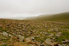 Ijzig landschap stock afbeelding