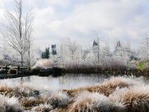 Ijzig landschap met vijver Stock Foto's