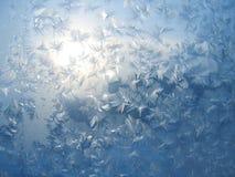 Ijzig natuurlijk patroon op de wintervenster Royalty-vrije Stock Fotografie
