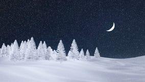 Ijzig net bos bij sneeuwvalnacht met maan Stock Fotografie