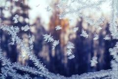 Ijzig sneeuwvlokpatroon op een de wintervenster, buiten het bos bij zonsondergang stock fotografie