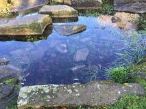 Ijzig water Royalty-vrije Stock Fotografie