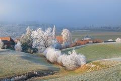Ijzige bomen in het platteland stock fotografie