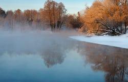 Ijzige de winterochtend Stock Fotografie