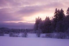 Ijzige de winterochtend Royalty-vrije Stock Foto