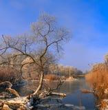 ijzige nevelige ochtend op de rivier Royalty-vrije Stock Fotografie