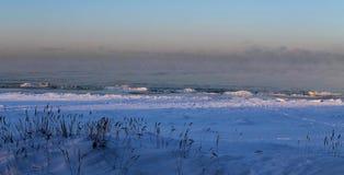 Ijzige ochtend dichtbij de Oostzee stock foto