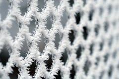 Ijzige omheining - de wintertextuur stock afbeelding