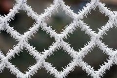 Ijzige omheining - de wintertextuur stock fotografie