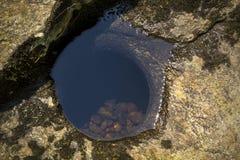 Ijzige pothole, rots van Sugar River, Nieuwpoort, New Hampshire Royalty-vrije Stock Fotografie