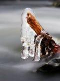 Ijzige takken boven het koelen stroom Bezinningen in ijskegels Royalty-vrije Stock Foto