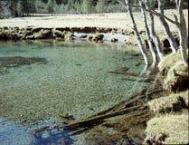 Ijzige wateren Stock Fotografie