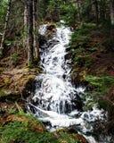 Ijzige waterval royalty-vrije stock fotografie