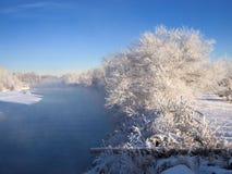 Ijzige witte bomen door rivier Royalty-vrije Stock Foto's