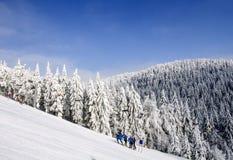 Ijzige zonnige de winterdag Noordelijke Schoonheids Aziatische bergen Stock Afbeelding