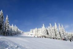 Ijzige zonnige de winterdag Noordelijke Schoonheids Aziatische bergen Royalty-vrije Stock Afbeelding