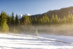 Ijzige zonnige ochtend in Tirol stock afbeeldingen