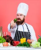 Ik deed het Het gezonde voedsel koken vegetari?r Rijpe chef-kok met baard Het op dieet zijn en natuurvoeding, vitamine Gebaarde m stock foto