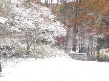 Ik heb van Witte Kerstmis gedroomd Stock Afbeeldingen
