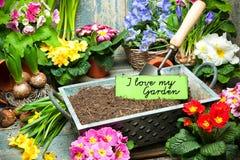 Ik houd van mijn tuin royalty-vrije stock afbeeldingen