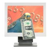 Ik houd van online te winkelen! Stock Afbeelding