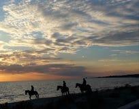 Ik houd van sunsets stock afbeeldingen