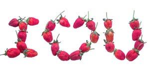 Ik houd van u de Dag van Valentine Stock Fotografie
