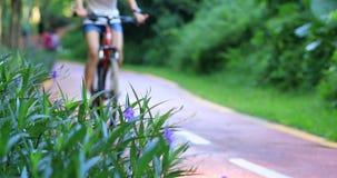 Ik kan met mijn vliegen bikeDefocused het jonge vrouw cirkelen in zonnig ochtendpark stock video