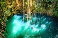 在奇琴伊察,墨西哥附近的Ik-Kil Cenote。 免版税库存照片