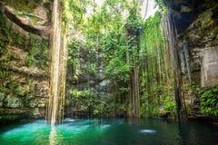 在奇琴伊察,墨西哥附近的Ik-Kil Cenote。 库存图片