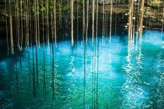 Ik-Kil Cenote, nära Chichen Itza, Mexico. Arkivbilder