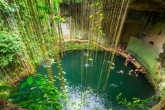 Ik-Kil Cenote near Chichen Itza. In Mexico Royalty Free Stock Images