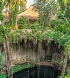 Ik-Kil cenote near Chichen Itza. Mexico. Ik-Kil cenote near Chichen Itza, Mexico Stock Photos