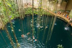 Ik-Kil Cenote near Chichen Itza, Mexico. Lovely cenote with transparent waters and hanging roots Stock Photo