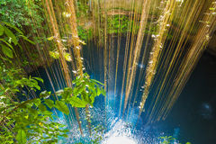 Ik-Kil Cenote, near Chichen Itza, Mexico. Stunning cenote with transparent waters and hanging roots Royalty Free Stock Photos