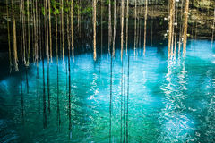 Ik-Kil Cenote, près de Chichen Itza, le Mexique. Images stock