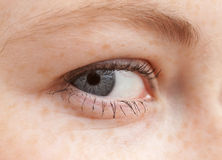 Ik zie u - Macro van menselijk oog Stock Afbeeldingen